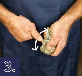 Apertura de la ostra por el lateral paso 2