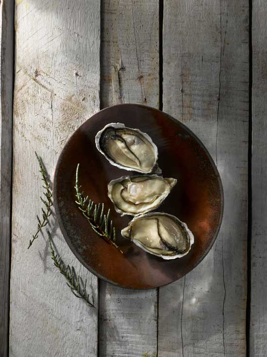 The health benefits of oysters