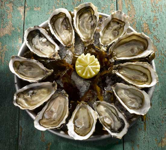 Sirve bien tus ostras